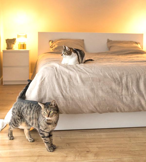 Bettbezüge aus Leinenstoff