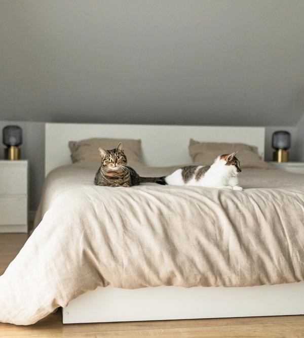 Natürliche Bettwäsche aus Leinen